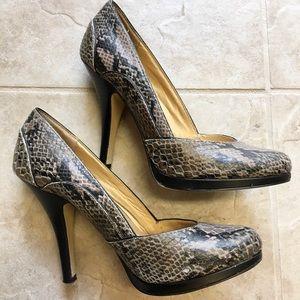 Stunning Seychelles faux snakeskin leather heels!